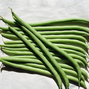 Picture for category Beans