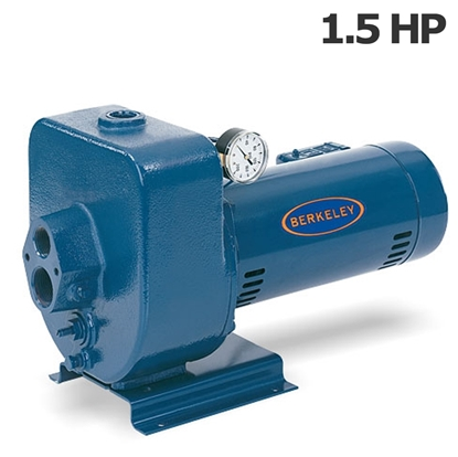 Picture of Berkeley 1.5HP 115-230V irrigation pump