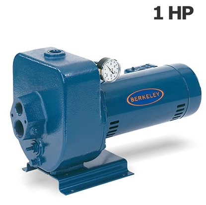 Picture of Berkeley 1HP 115-230V irrigation pump