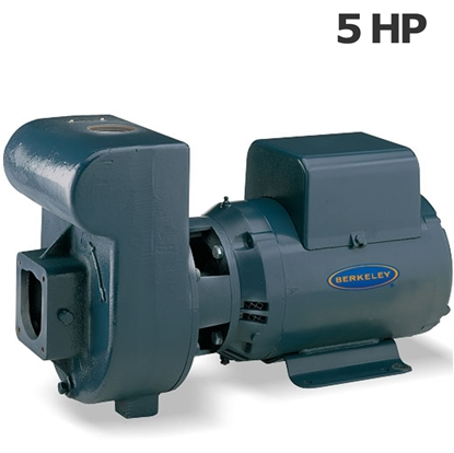 Picture of Berkeley 5HP 230V irrigation pump